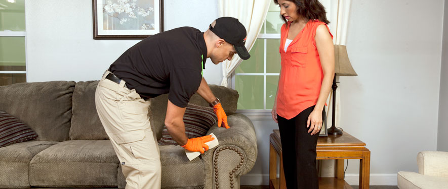 Manchester, VT carpet upholstery cleaning